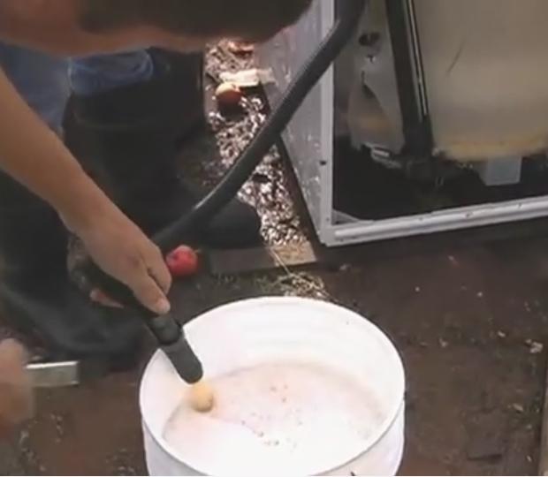 Comment faire du jus pommes 2 pressoirs simples et rapides maisoneco construction maison - Jus de pomme maison ...